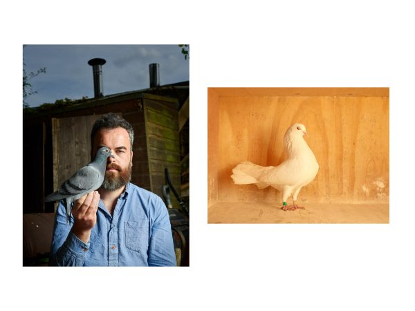Jon Day and his pigeons for The Observer Magazine, April 2019.